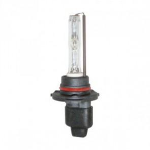 H10 Xenon Lamp